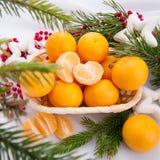 Decoración de la Navidad con los mandarines y el árbol de abeto Imágenes de archivo libres de regalías