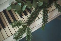 Decoración de la Navidad con la ramita verde del árbol de Navidad Imagen de archivo