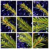 Decoración de la Navidad de la matriz Fotos de archivo libres de regalías