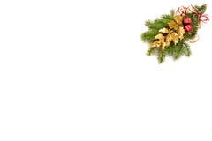 Decoración de la Navidad del acebo Fotografía de archivo libre de regalías
