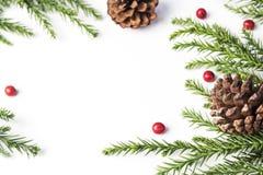 Decoración de la Navidad del cono y de las hojas del pino en el fondo blanco Imagen de archivo