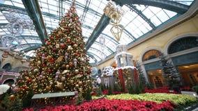 Decoración de la Navidad del invernadero de Bellagio y de los jardines botánicos metrajes