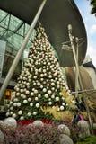 Decoración de la Navidad en el camino de la huerta de Singapur Imagen de archivo libre de regalías