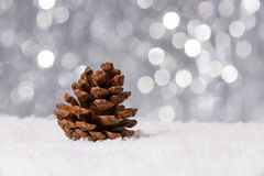 Decoración de la Navidad en nieve Foto de archivo libre de regalías