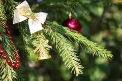 Decoración de la Navidad en rama Foto de archivo libre de regalías