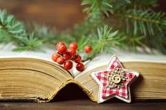 Decoración de la Navidad: Ornamento asteroide, bayas de la Navidad y un libro viejo Fotos de archivo
