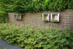 Decoración de la pared en el jardín Fotos de archivo libres de regalías