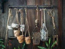 Decoración de la planta de tiesto exhibida en la pared de madera Imagenes de archivo