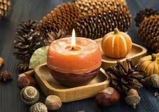 Decoración de la vela del otoño con los conos, las bellotas, el anís y las calabazas Imagen de archivo