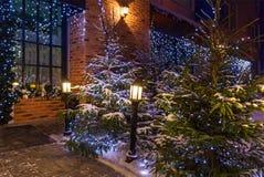Decoración de la yarda de la Navidad Imágenes de archivo libres de regalías