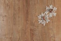 Decoración de las bolas de la Navidad Imágenes de archivo libres de regalías