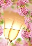 Decoración de las flautas del jacinto y de champán Imagenes de archivo