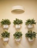 Decoración de las flores de pared Fotos de archivo