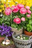 Decoración de las flores del resorte y de los huevos de Pascua Fotos de archivo libres de regalías