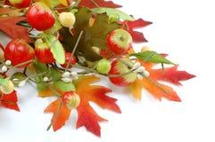 Decoración de las hojas y de las manzanas de la caída - acción de gracias Imagenes de archivo