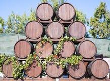 Decoración de los barriles de vino en Santorini Fotografía de archivo libre de regalías