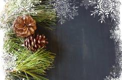 Decoración de los conos del pino para la Navidad con la capa de los copos de nieve Foto de archivo libre de regalías