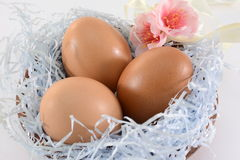 Decoración de los huevos de Pascua Fotografía de archivo libre de regalías