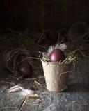 Decoración de los huevos de Pascua coloridos Foto de archivo