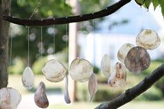 Decoración de los shelles que cuelga del árbol. Fotos de archivo