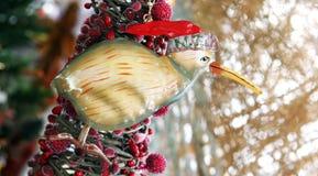 Decoración de Navidad de Nueva Zelandia Fotos de archivo