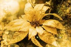 Decoración de oro de la Navidad en la rama del árbol de abeto Imagen de archivo libre de regalías