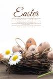 Decoración de Pascua con los huevos Imágenes de archivo libres de regalías