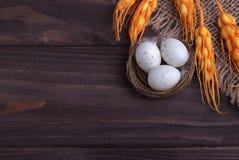 Decoración de Pascua con los huevos de Pascua en las espiguillas de la naranja del paño de la arpillera de la jerarquía Foto de archivo libre de regalías
