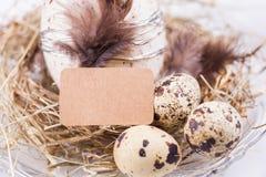 Decoración de pascua de los huevos de codornices Fotografía de archivo libre de regalías
