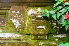 Decoración de piedra tradicional de la pared de la escultura de Bali cubierta con el musgo, los liquenes y la vegetación con los  fotografía de archivo