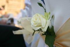 Decoración de Rose Foto de archivo libre de regalías