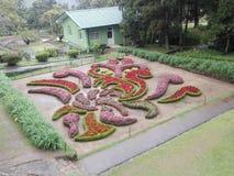 decoración de Sri Lanka Fotografía de archivo