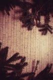 Decoración del Año Nuevo con el pino Imagen de archivo libre de regalías