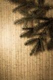 Decoración del Año Nuevo con el pino Fotografía de archivo