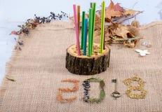 Decoración 2018 del Año Nuevo con las hojas, las monedas y una llave Imagen de archivo