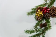 Decoración del caramelo de la Navidad Foto de archivo libre de regalías