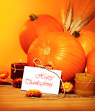Decoración del día de fiesta de acción de gracias Imagen de archivo