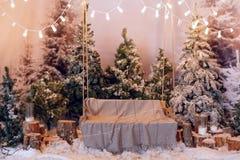 Decoración del día de fiesta de la Navidad imagen de archivo libre de regalías