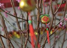 Decoración del flor del ciruelo Foto de archivo libre de regalías