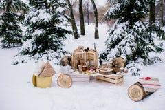 Decoración del invierno Foto de archivo
