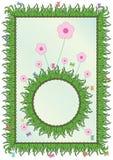 Decoración del marco de las hierbas Fotografía de archivo libre de regalías