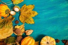Decoración del otoño Fotos de archivo