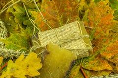 Decoración del otoño con el jabón hecho a mano Imágenes de archivo libres de regalías