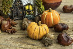 Decoración del otoño con las calabazas, bellotas, casa de hadas en de madera Fotografía de archivo libre de regalías