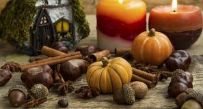 Decoración del otoño con las calabazas, velas, bellotas, casa de hadas encendido Fotografía de archivo libre de regalías