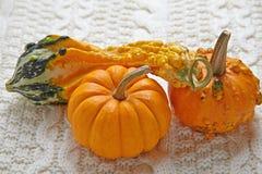 Decoración del otoño de la caída Fotos de archivo