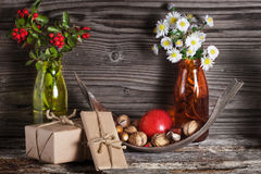 Decoración del otoño, frutas del otoño, acción de gracias Imagen de archivo