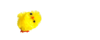 Decoración del pollo de Pascua aislada en el fondo blanco Fotos de archivo