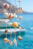 Decoración del shell del mar imagenes de archivo