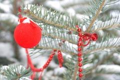 Decoración en un árbol de navidad Foto de archivo